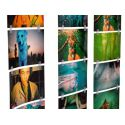 Fotoclips 100 + 10 by Lomography